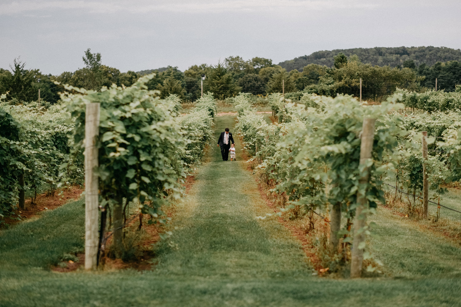 Vineyard Wedding photography by geneoh photography