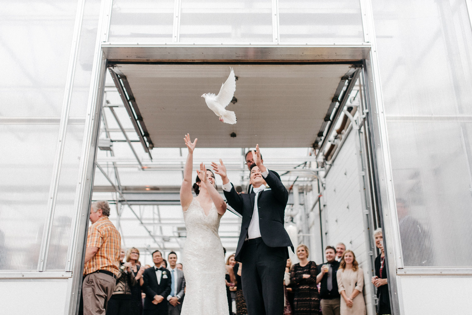 Dove release by Bride and Groom by geneoh photography