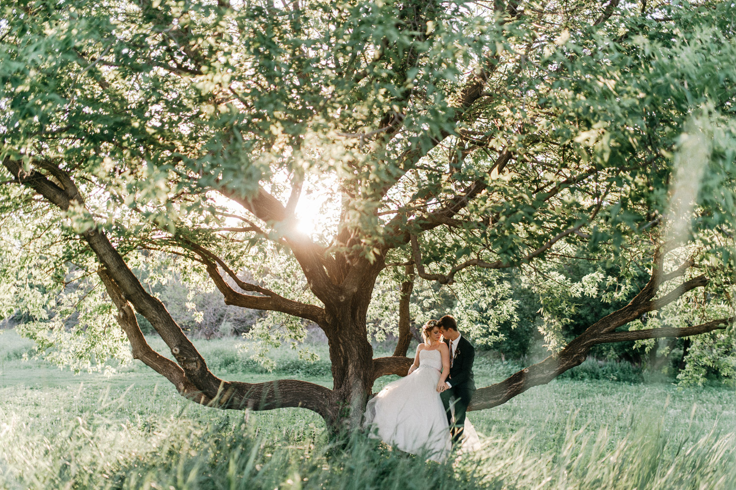 Creative sunset wedding portraits by geneoh photography